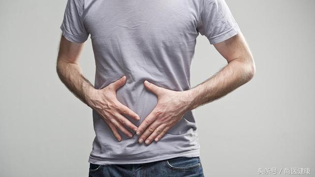 肠道就是运送食物消化排泄?它可不只是消化器官