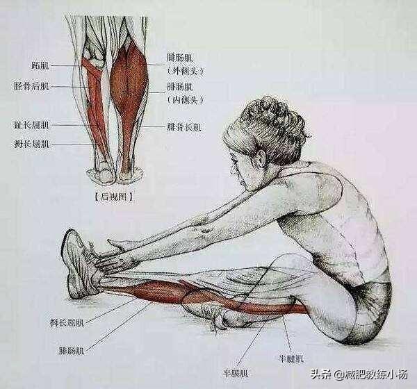 跳绳和跑步哪个更减肥?哪个更瘦腿?