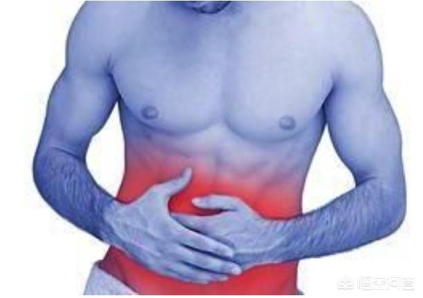 肠胃功能紊乱,应该如何调?