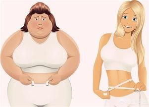 久坐引起大肚腩,电脑一族如何做瘦身操?