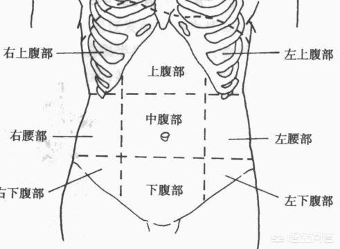 腹部疼痛的原因有哪些?