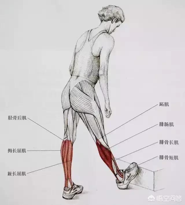 小腿肌肉明显,跳减肥操会不会变得更严重?