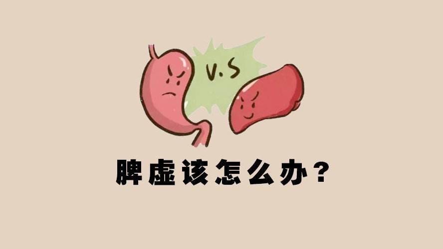 肠胃功能紊乱怎么调理肠胃怎么调理